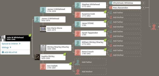Whitehead family tree genealogical chart