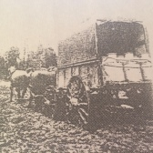 Cream cart that traveled between Warragul and the outlying farms collecting the produce.