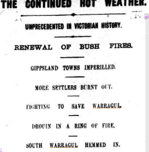 Warragul Fires The Argus 1899